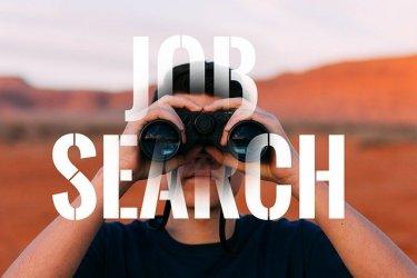 27歳無職の男性が自分の今後のキャリアについて考えてみた【スキルを積み転職をしろ】